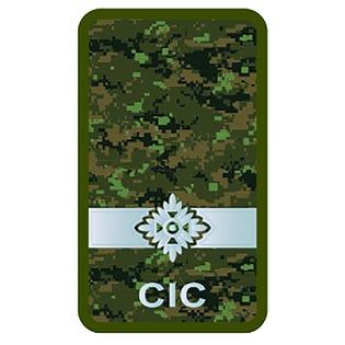 CIC Officer Cadet Combat Rank Slide