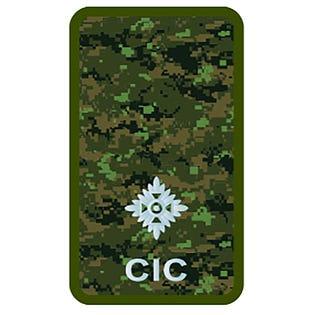 CIC 2Lt Combat Rank Slide