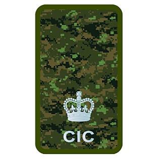 CIC Maj Combat Rank Slide