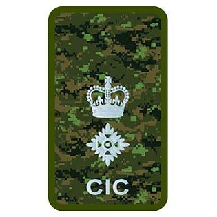 CIC LCol Combat Rank Slide