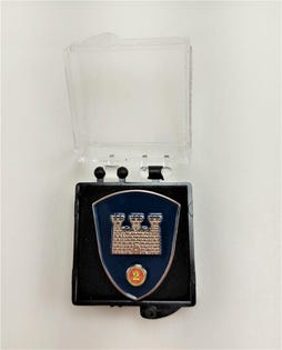 2 CDSG Lapel Pin