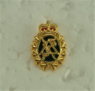 Dental Lapel Pin