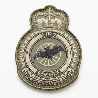1 WING Heraldic Flight Badge