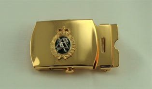 Dental Belt Buckle (gold)