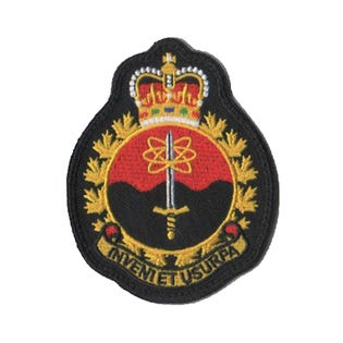 21 EW Regt. Badge