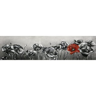 Canvas Candy Brightness in Darkness Poppies Long 15''x60''