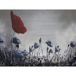 Canvas Candy Perfect Poppies Large 30''x40''