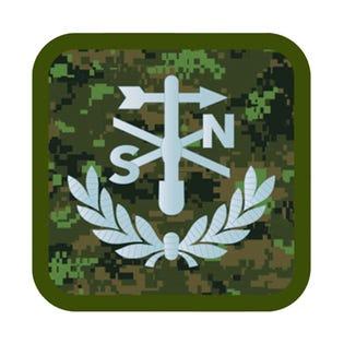 Canadian Intelligence Corps (C INT C) Met Tech L2 CADPAT