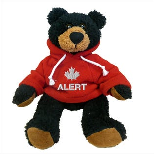 "Alert Black Bear Plush 10"""