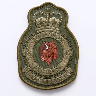 404 SQN BUFFALO HEAD PATCH COLOR
