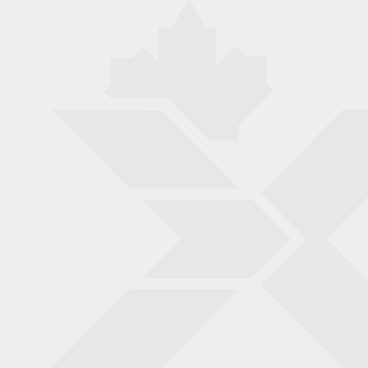 The Royal Canadian Legion Clay Poppy Brooch