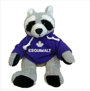 Esquimalt Raccoon Plush 10""