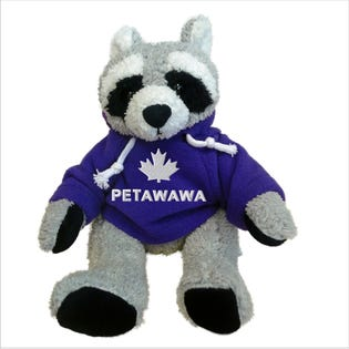Petawawa Raccoon Plush 10""