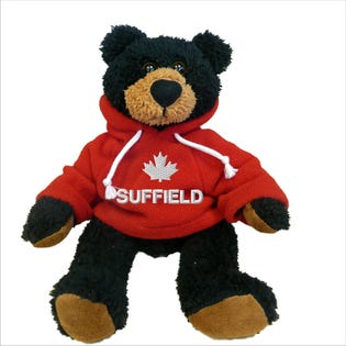 Suffield Black Bear Plush 10""