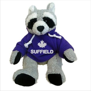 Suffield Raccoon Plush 10""