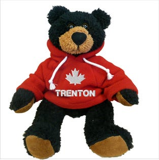 "Trenton Black Bear Plush 10"""